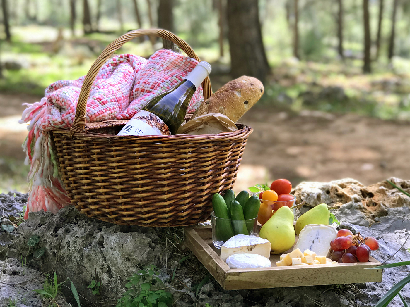 פיקניק ביער