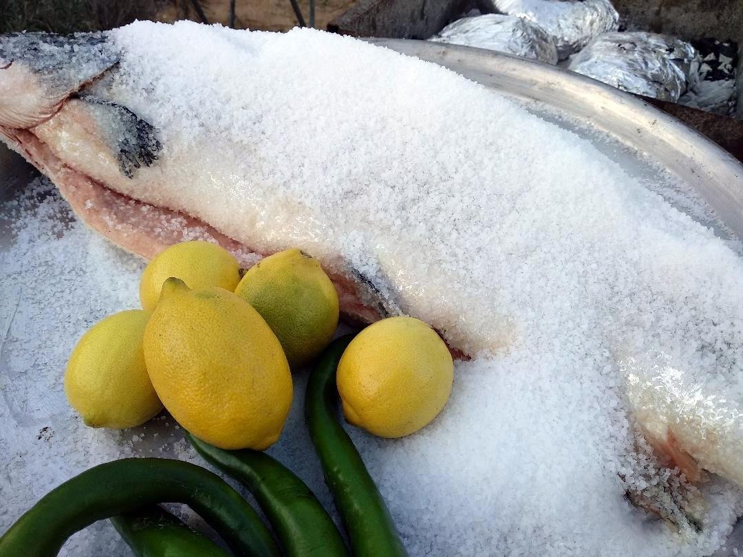 דג סלמון שלם