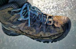 שורש נעליים