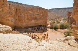 גב במדבר