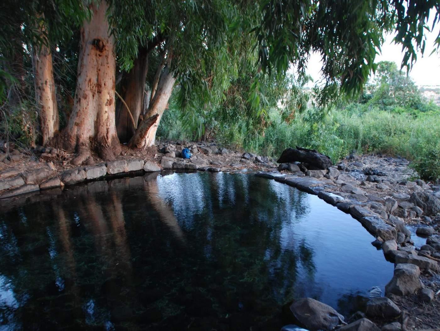 בריכה טבעית לטבילה
